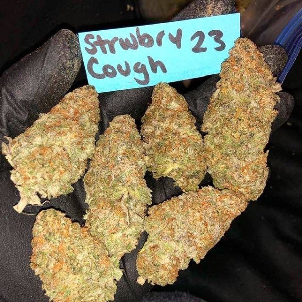 Strawberry Cough AAA-